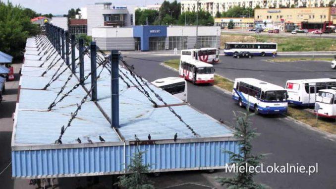 Od jutra nowe linie autobusowe. Sprawdź rozkład jazdy